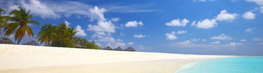 Tropical beach in the Indian Ocean