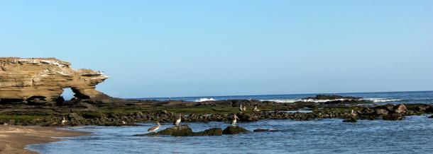 Egas Port
